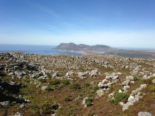 Gorgeous views greet us at the top, all the way across False Bay.