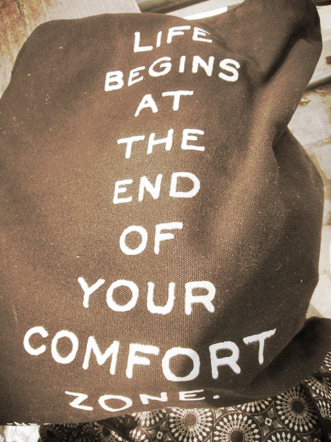 Alez has the perfect quote on her bag ~ skydiving beats sitting in my study anyway. Do what you afraid of ~ or even if you are not afraid ~ that is where your best life lives!!