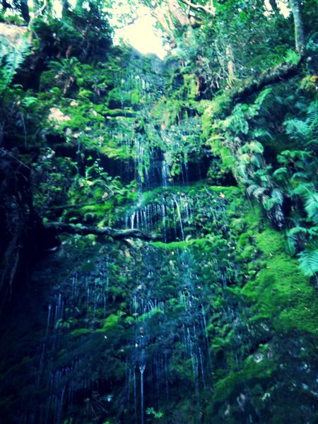 The spectacular 18m high Cecilia Forest waterfall.