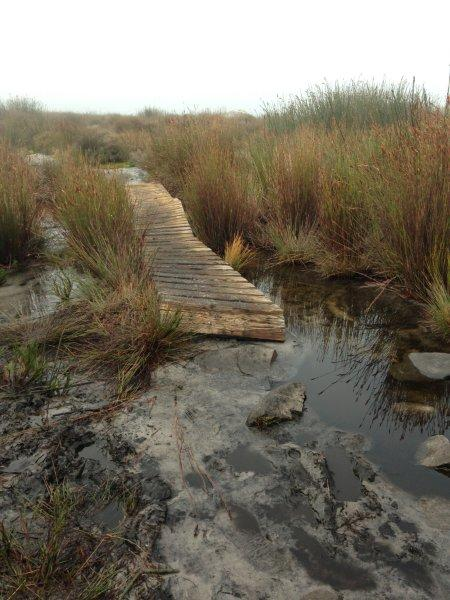 Wooden walkways to help us over the really wet spots.