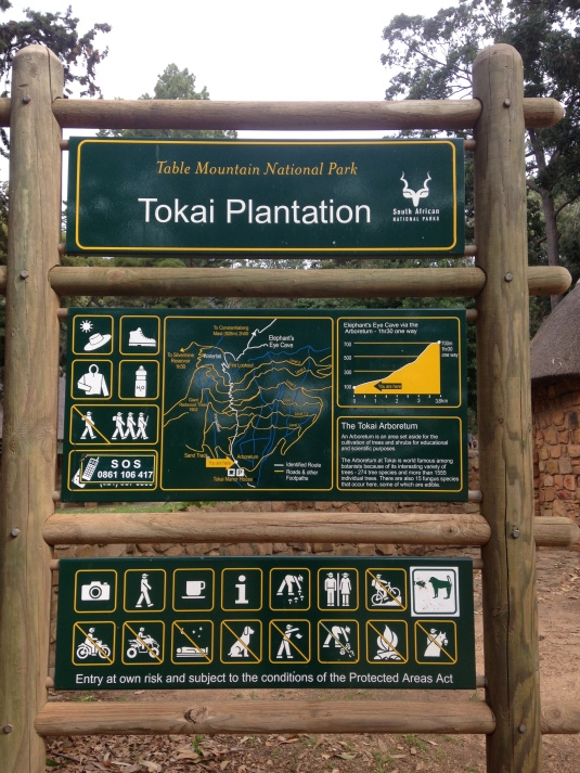 We started out from the Tokai Plantation.
