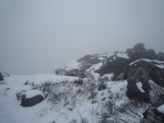 Hiking in the winter-wonderland ~ so super pretty!