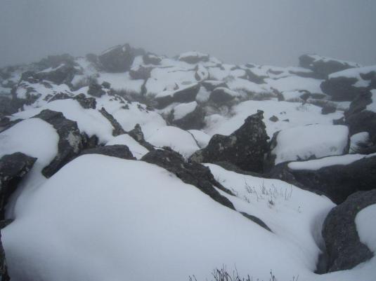 Such a pretty winter-wonderland!