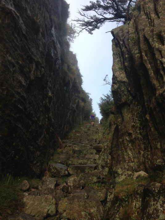The last few stone steps to the top of Platteklip Gorge.