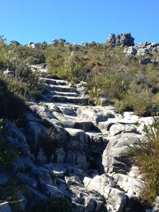 The path leading to the table top and McClears Beacon, the highest point on Table Mountain