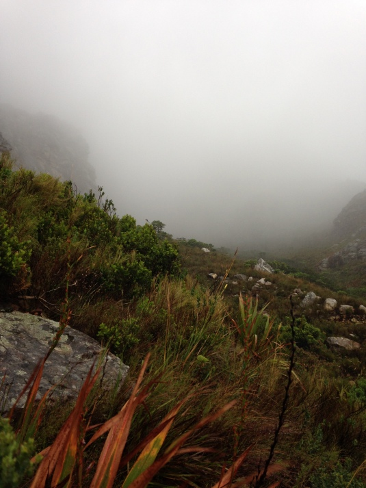 The misty mountain slopes, it wasn't before long the rain set in.