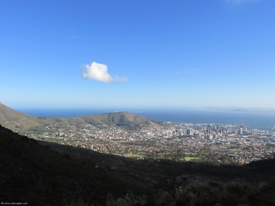 Overlooking the city as we walked the contour path along the front of Table Mountain.