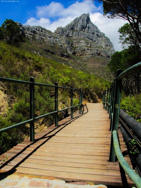 Walking the beautiful Pipe Track under the Twelve Apostles.