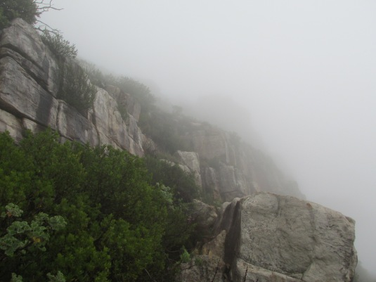 Not much of the mountain to see as the mist rolled over it's edges.