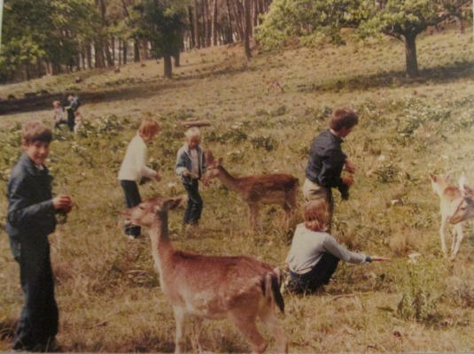 Feeding the bucks at Rhodes Memorial. We were so young!