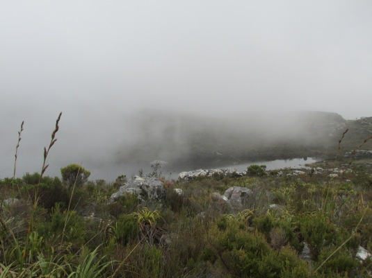 The mist rolling in over De Villiers Dam.