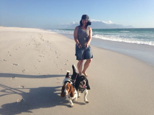 Marli and my two favourite Basset Hounds, Lily and Franklin!